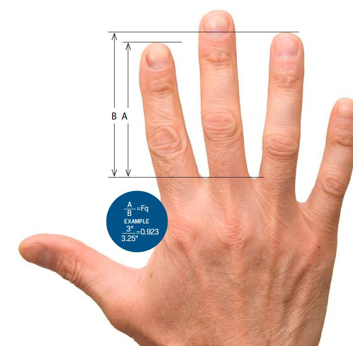 finger length meaning - when ring finger is longer than index finger, indicates a love of adventure and risks, physical, financial, etc., beware of speeding!