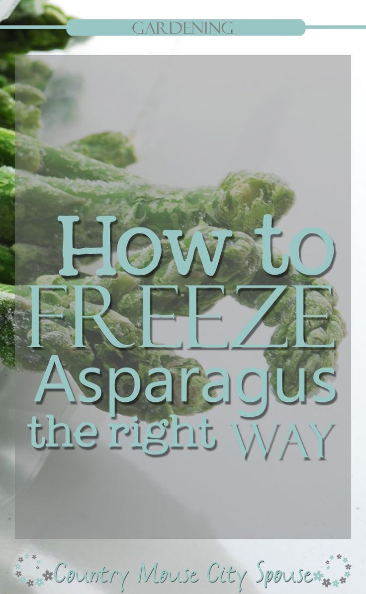 How To Freeze Asparagus The Right Way