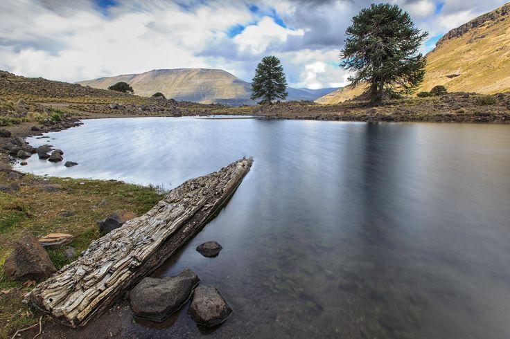 Laguna Hualcupen - Laguna Hualcupen, a 10 km de la localidad de Caviahue en la Provincia del Neuquen, Patagonia, Argentina