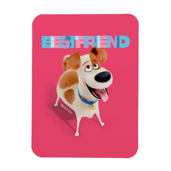 Pin On Secret Life Of Pets 2