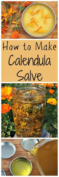 How to make a healing calendula salve. It's easier than you might think!