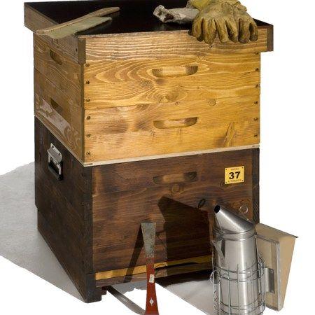 Luxury Welche Bienenbeute ist die richtige Was gibt es berhaupt f r Bienenbeuten Hier findest Du