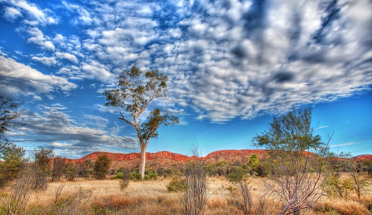 195 best tourist information images on pinterest blue clouds holidays and indonesia - Alice springs tourist office ...