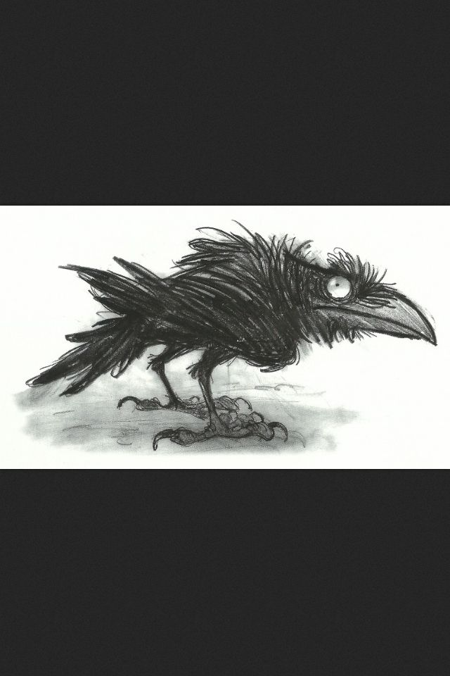 Raven concept ★ Find more at http://www.pinterest.com/competing/