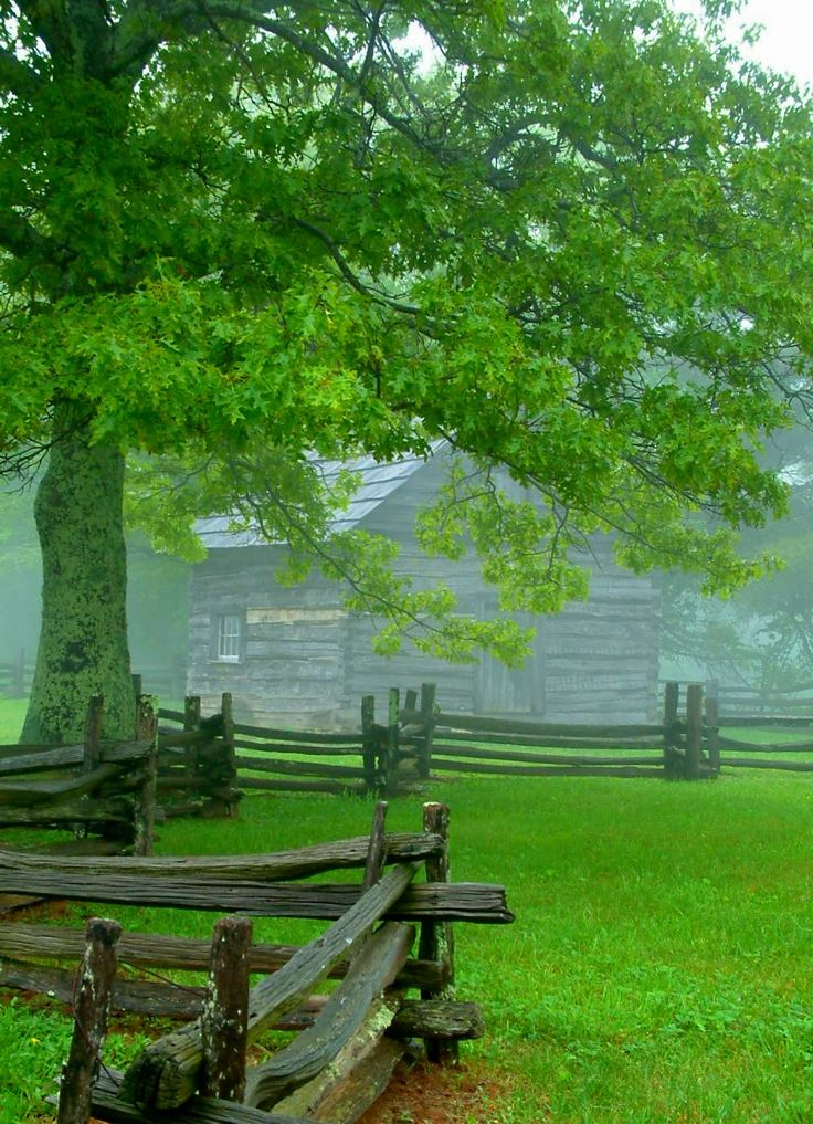 """This log cabin by the Blue Ridge Parkway in Virginia was the home of """"Aunt"""" Orelena Hawks Puckett, a midwife who delivered over 1,000 babies in this region before she died at 102."""