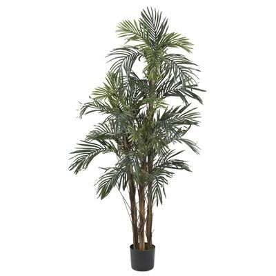 Nearly Natural Robellini Palm Tree in Pot | Wayfair