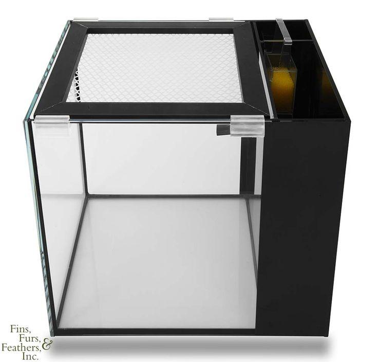 1000 ideas about nano aquarium on pinterest aquarium for 10 gallon koi tank