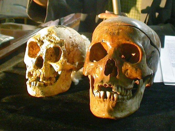 Mythische wezens die echt bestaan.  http://reizen.nl.msn.com/afbeeldingen/waar-kom-je-deze-mythische-wezens-tegen?view=desktop&ocid=nwsltroct2013#image=11