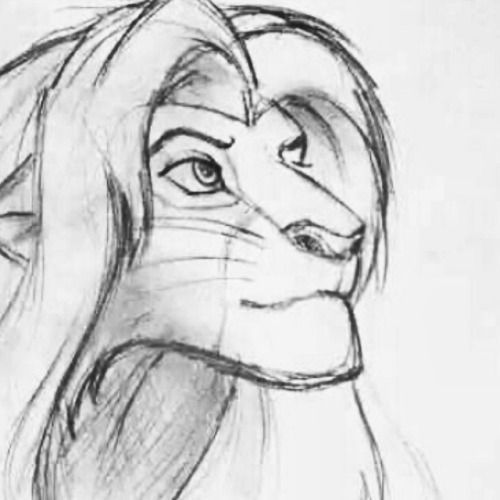 Best 25 Dibujos de leones faciles ideas on Pinterest
