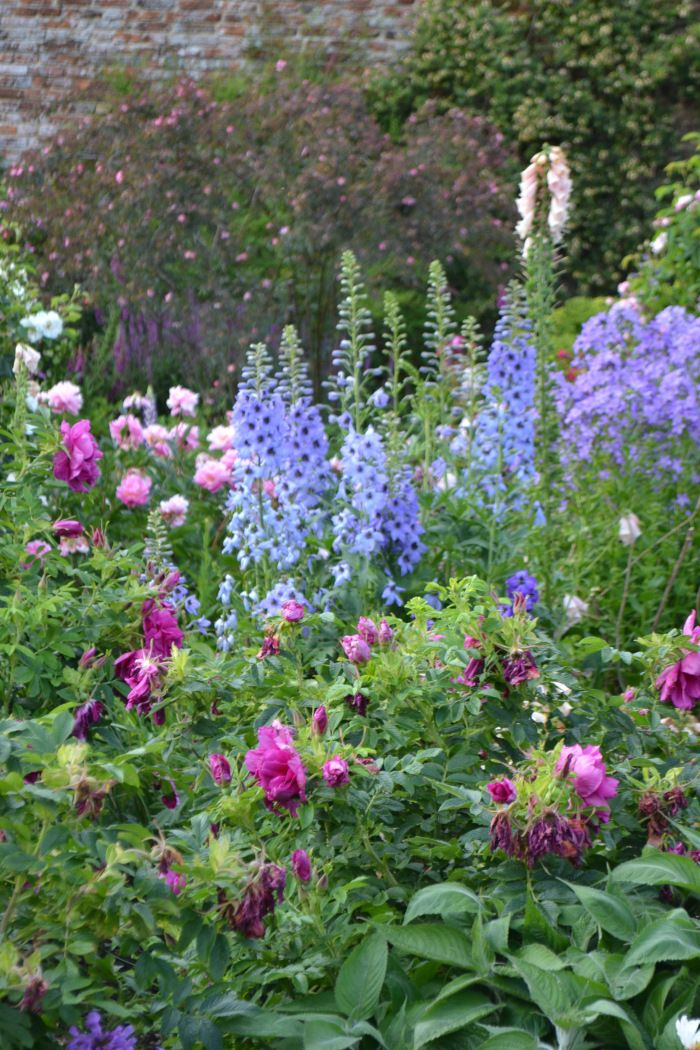 Roses and more… | SISSINGHURST GARDEN - Blue delphiniums