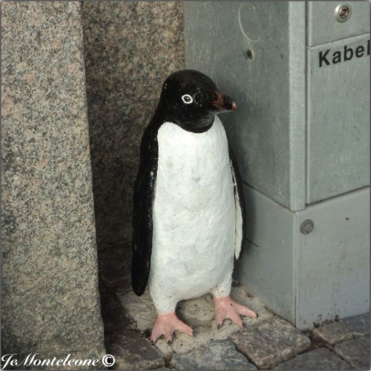 Pingvin by Linnea Jörpeland