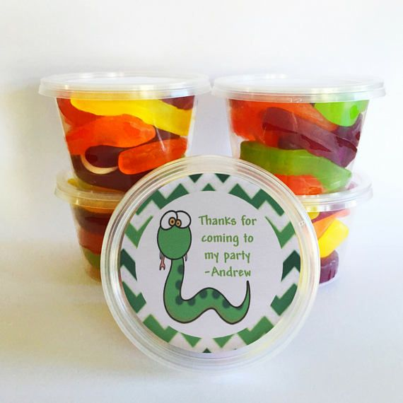 5 Reptile Party Favours | Reptile party ideas | Personalised | Great for Reptile Snake Party Bags
