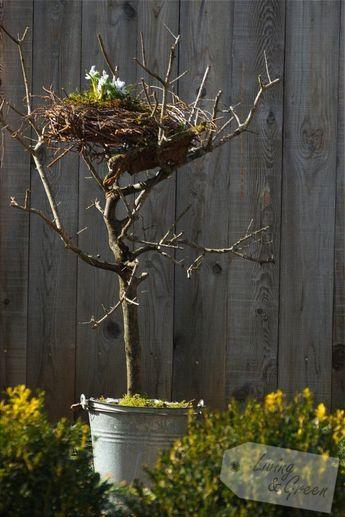 Frühling Ostern DIY Dekoration / Spring Easter Decor. Ein Nest aus Birkenreisig - Nest aus Birkenreisig DIY