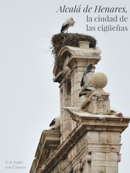 Apenas a 30 km. de Madrid se encuentra Alcalá de Henares, la Ciudad de las Cigüeñas  y cuna de Miguel de Cervantes. Destino frecu...