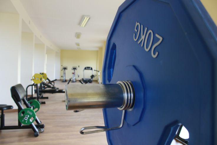 La Palestra 3 - The Gym 3