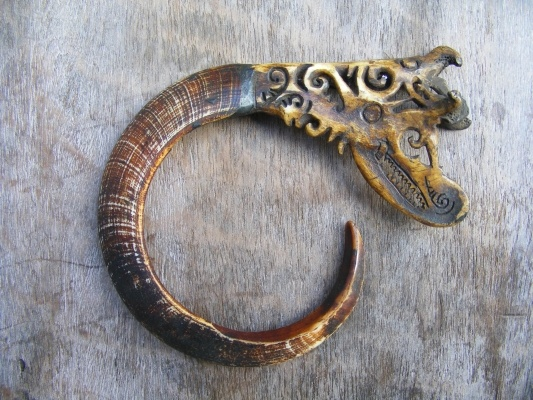 Borneoartifact item number: AW 0155 A one and only Bidayuh elders pendant amulet trophy made from real authentic pig / wild boar / Sus scrofa teeth having curved almost 300 degrees! The teeth is decorated with deer horn at one end forming a Naga / Asos head.    1980s collection, mint. Across: 13 cm / 5.1 inches Curvature length of teeth only: 21 cm / 8.3 inches Deer horn only: 8 x 6 cm / 3.1 x 2.4 inches