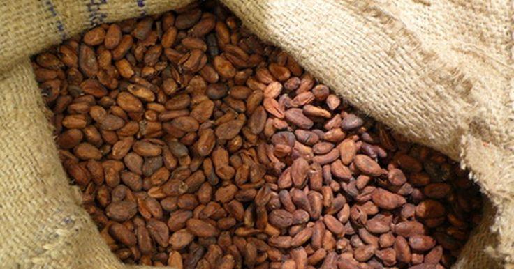 Cómo fermentar los granos de cacao. La fermentación de los granos de cacao es fundamental para la producción de una cocoa de calidad. La fermentación es la que rescata el sabor a chocolate de los granos que te es familiar. Antes de este proceso tienen un gusto amargo y sin él no tendrían ese rico sabor. Las técnicas varían dependiendo de la región y del productor. Algunos prefieren ...