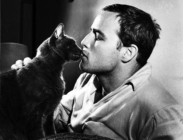 Marlon Brando and cat.
