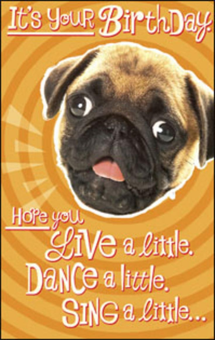 1000 images about kaartjes – Funny Dog Birthday Cards