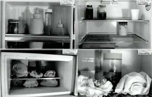 Police evidence photo used in trial showing the contents of Jeffrey Dahmer's refrigerator.