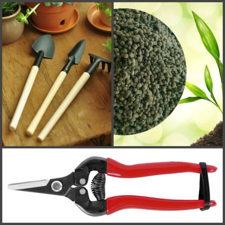 Bonsai Garden Tool Set + Organic Slow Release Bonsai Fertilizer Pellets by bloomyHOME on Etsy