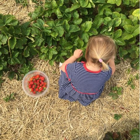 3 little ladies and me: 20 things to do in the summer holidays Stuck for things to do this summer? Here's 20 ideas to keep your children busy and happy
