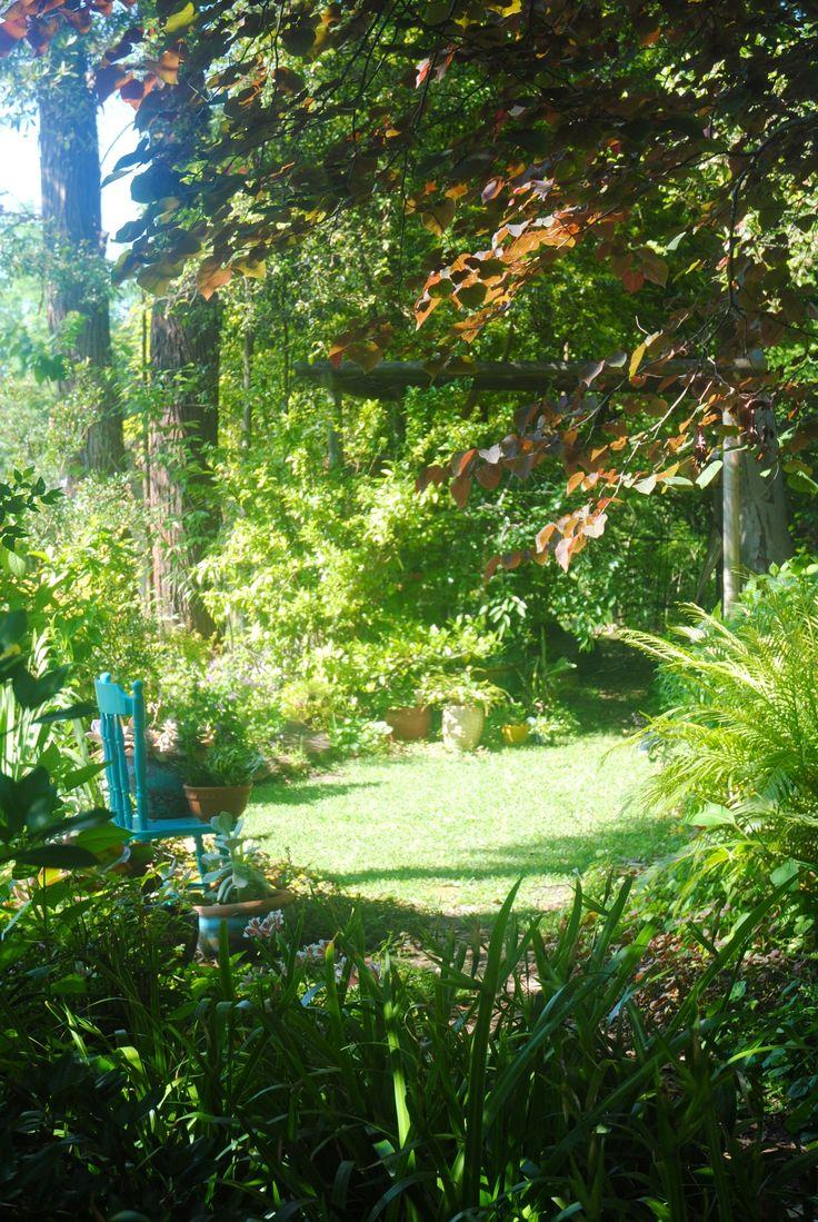 East-facing garden