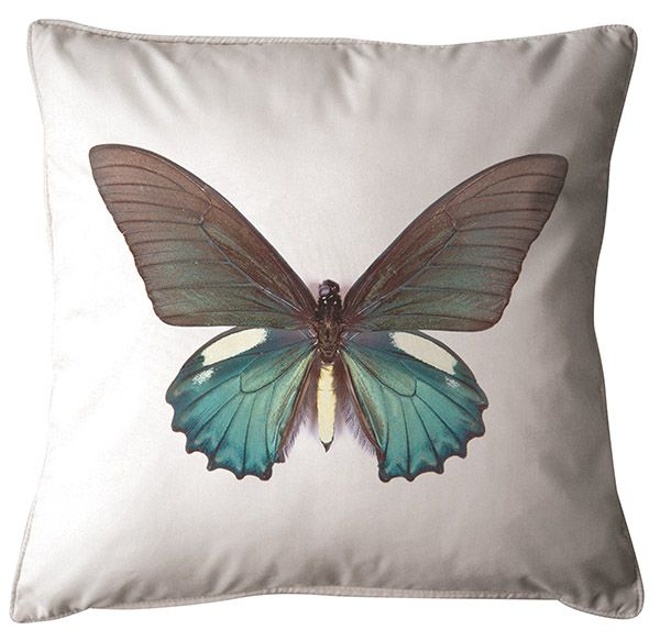 Butterfly Cushion. 100% Organic Cotton and comes with a plush filler. Only $45 with Free Shipping! http://www.stoolsandchairs.com.au/butterfly-cushion/