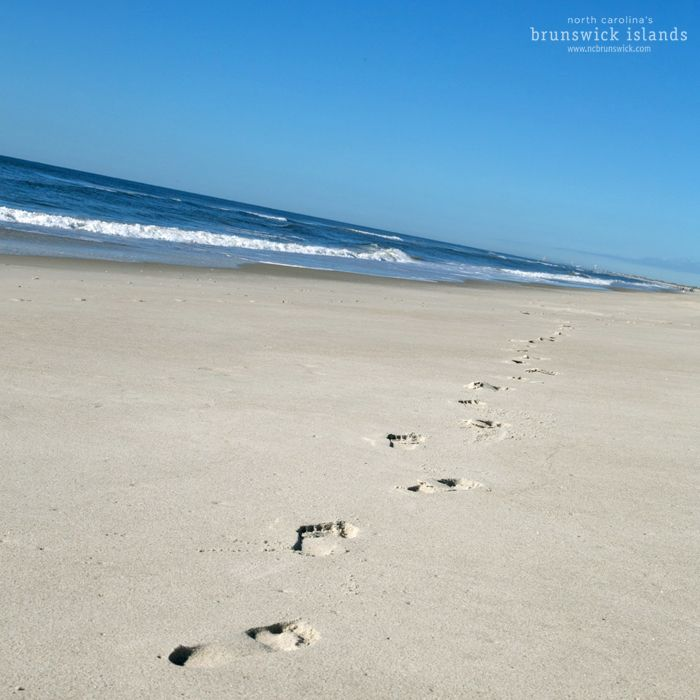 25 best images about holden beach nc on pinterest the for North carolina surf fishing license