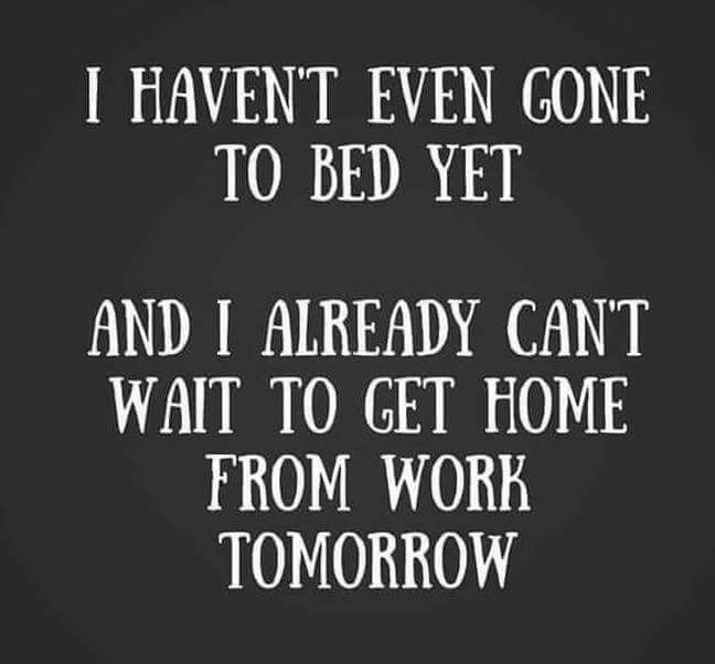 The Tuesday Evening Roundup Of All My Favorite Things Funny Quotes Work Humor Quotes