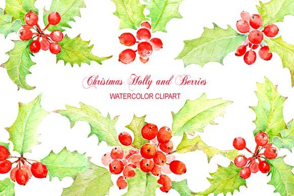 Watercolor Clip Art Holly Berry by Corner Croft on @creativemarket