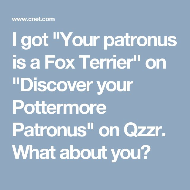 "I got ""Your patronus is a Fox Terrier"" on ""Discover your Pottermore Patronus"" on Qzzr. What about you?"