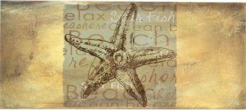 Starfish Sassafrass mat  22 x 10 insert for full mat or perfect camper mat!