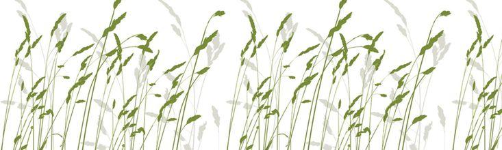 Straw - Green - Wall Mural & Photo Wallpaper - Photowall