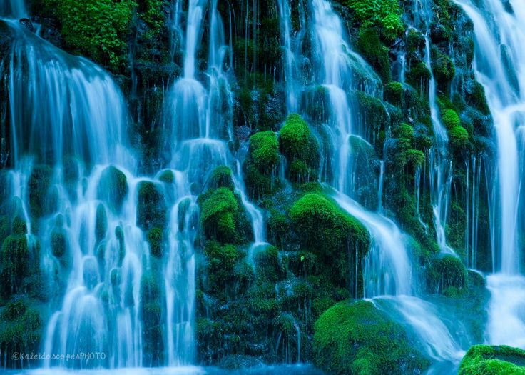 nature photography,original forest art print green photo water picture waterfall wall art stream artwork spring print moss décor cascade by KaleidoscopesPHOTO2 on Etsy