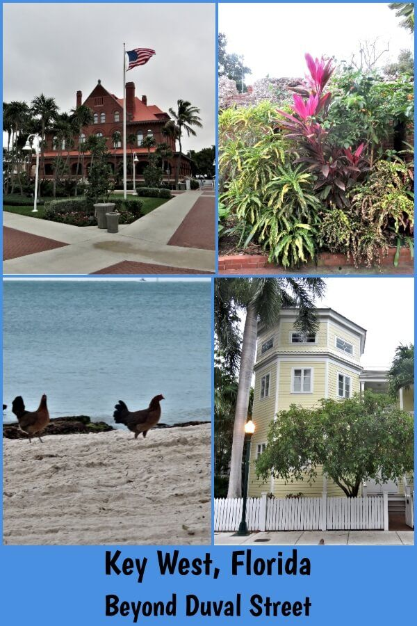 Key West Duval Street And Beyond Key West Family Travel Beautiful Places To Visit