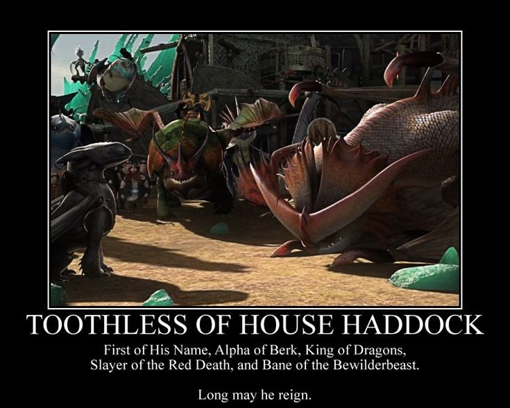 toothless memes - Google Search
