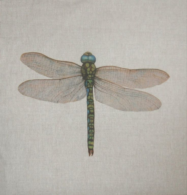 Dragonfly Cushion Panel £5