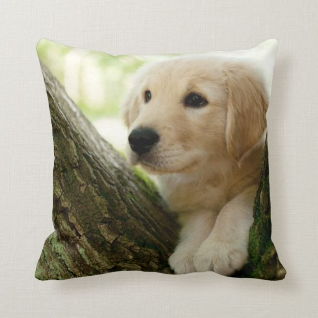 Labrador Puppy Sitting In A Woodland Setting Throw Pillow Zazzle Com Puppy Sitting Labrador Puppy Puppy Beds