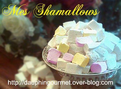 Shamallows (pâte de guimauve) : la recette facile