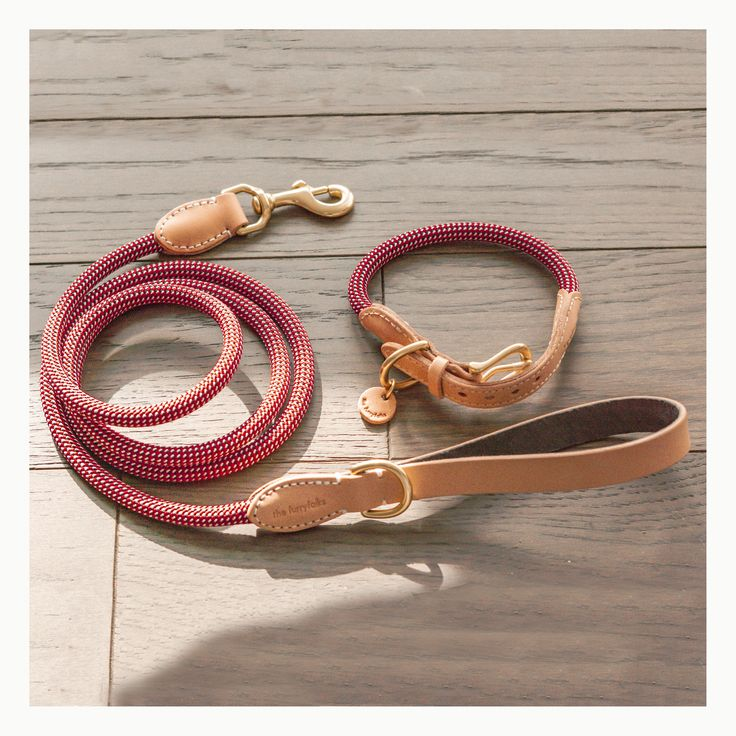 RopeSeries Dog Collar & Leash in Red Natural