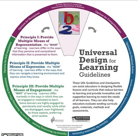 UDL Learning Wheel. I think this is a great strategy for inclusive education.