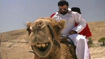 Schmelvis on a camel in scorching desert 'all shook up' from schvitz!