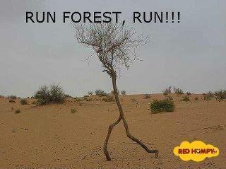 Hilarious!