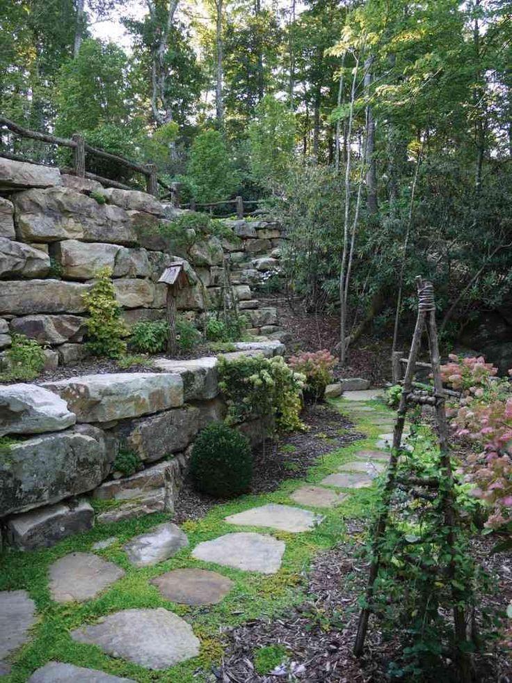 Bodendecker oder Unkraut zwischen Steinplatten
