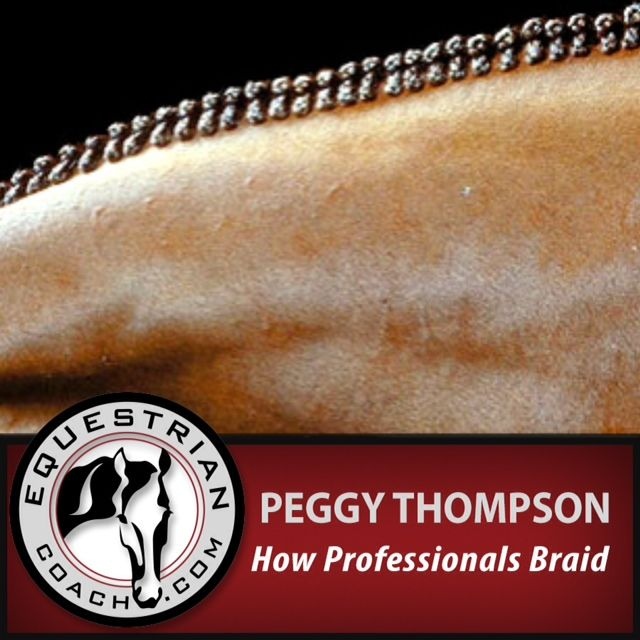 Join A-Circuit professional braider, Peggy Thompson, as she takes us step by step through the braiding of a mane and imparts her secrets to a perfect braid job.