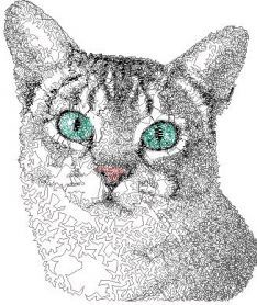 Grey home cat free photo stitch embroidery design. Machine embroidery design. www.embroideres.com