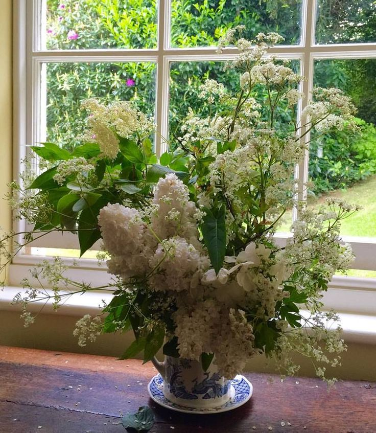 All White Arrangement with Cone Hydrangea, Astilbe, Queen Anne's Lace. & Baby's Breath.........  https://www.facebook.com/1075936979125849/photos/a.1099446710108209.1073741827/1133445933374953/?type=3