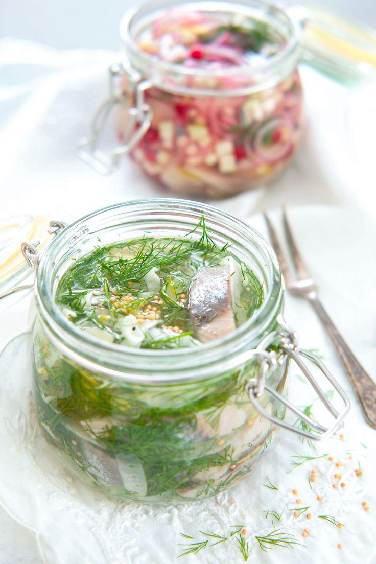 Her får du to unike oppskrifter på deilig julesild! Å lage egen sild på glass krever svært liten innsats og smaker helt fantastisk. Prøv spekesild med tyttebær og epler, både fargerikt og appetittlig. Eller min favoritt: Sild nedlagt i sursøt lake med dill, akevitt og sprø fennikel! http://www.gastrogal.no/julesild/  #Akevittsild, #Dillsild, #Eplesild, #Fennikelsild, #Fisk, #Husmannskost, #Jul, #Julesild, #Pålegg, #Sild, #Sildepålegg, #Spekesild, #Sursild, #Tilbeh