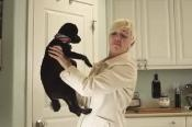 How To Remove Skunk Odor for Pets    Those unfortunate enough to have experienced the potency of skunk spray, know how impossible it is to remove skunk odor. Skunks spray a pungent fluid from a gland found under their tail when they feel threatened. Pets typically get sprayed the most. Acting immediately is essential to minimize the damage of the spray and make it easier to remove.      Read more: http://www.doityourself.com/stry/how-to-remove-skunk-odor-for-pets##ixzz1zynBjyH9